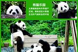 成都九寨沟黄龙熊猫乐园彩色草原双卧七日