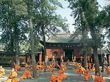 郑州到少林寺旅游