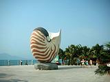 郑州到海口开启爆款旅游