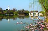 【诗画瘦西湖,人文古扬州】扬州+镇江+无锡+南京汽车三日游