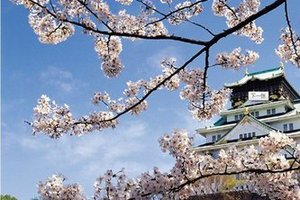 【日本本州亲子】东京+大阪  济南出发3飞六manbetx万博官方下载