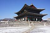 嗨爆--韩国首尔济州四飞六 特别安排专属您的首尔1天自由活动