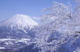 济南到日本本州全景7天(享双温泉、游升龙道、1天自由行)