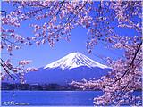 济南到日本北海道一地6日浪漫之旅