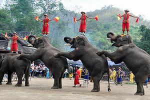 云南昆明+西双版纳+普洱国家公园+野象谷+中缅打洛边境4日游
