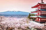 日本大阪+东大寺+意大利风情街+富士山7日6晚游