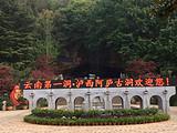 阿庐古洞旅游,云南泸西2日1晚跟团游,独立小包团