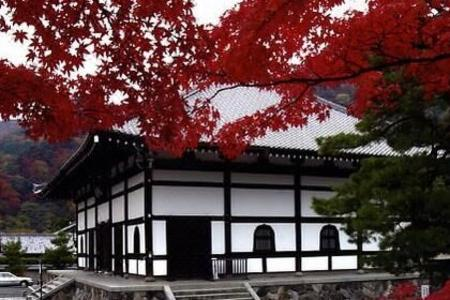 日本本州7日跟团游★大阪+京都+箱根+东京