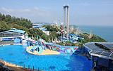 花样香港—直飞香港4晚5日游,主题公园之一海洋公园