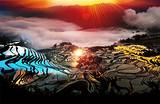 昆明+抚仙湖+建水+元阳+蒙自+弥勒6日摄影游