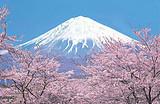 去日本过春节+迪士尼+大年三十