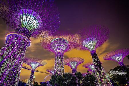新加坡、SEA海洋馆、马来西亚、波德申5晚6天
