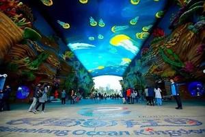 D8升级版:广州珠江夜游、动物世界、大马戏、飞鸟乐园双动三日