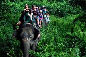 【10-11月绿野游踪】泰国五晚六日游