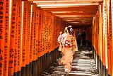 【3月慢游本州】日本全景7日