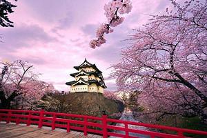 【3月-4月新经典の旅】大阪京都箱根东京6日