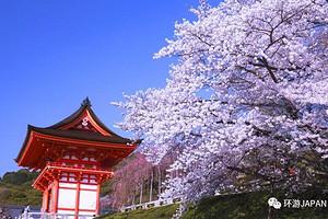 【3月-4月初见日本】双古都巡游6日