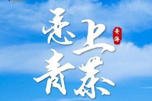 【恋上青茶】青海湖/茶卡/塔尔寺/金银滩草原/阿什贡双飞六日