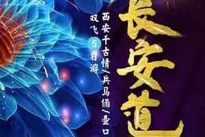 【长安道】西安千古情/兵马俑/壶口瀑布/韩城五日游
