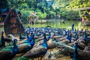 【假装在泰国】昆明普洱西双版纳双飞六日游