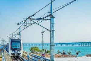 【网红1日游】南普陀+植物园+八市+海上火车+集美学村1日游
