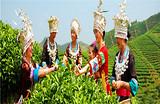 南宁到柳州三江大侗寨、大型实景演出《坐妹》、程阳风雨桥两日游