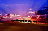 南宁到新疆之冬游喀纳斯7日游