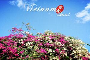 南宁到越南、芽庄、岘港、河内(三飞)5日纯玩游