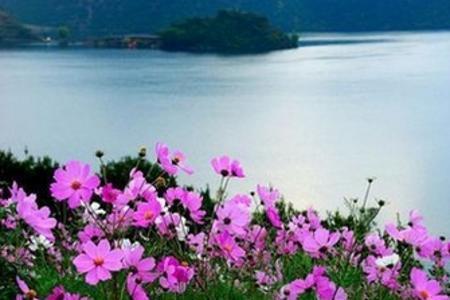 昆明出发到 丽江、香格里拉、泸沽湖纯玩8日游_白沙古镇