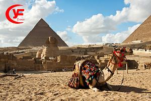 法老时代 埃及邮轮 阿斯旺 卢克索 红海8日游|西安起止