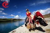 西藏拉萨、林芝、布宫、羊湖、纳木错4卧12日游|银川起止
