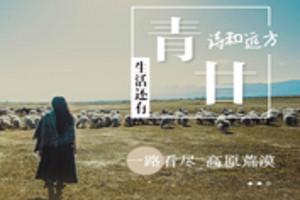 环线 敦煌-嘉峪关-张掖-祁连-青海湖-塔尔寺-兰州8日游