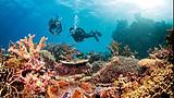 澳礁逸游:澳大利亚凯恩斯8日游(含签证、送自费)