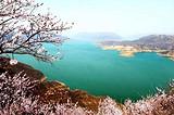 洛阳出发至新安荆紫仙山桃花节一日游