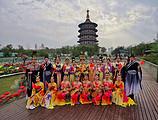 隋唐洛阳城(明堂天堂、九洲池)+二里头夏都遗址博物馆一日游