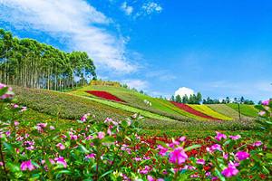 漳州十里蓝山