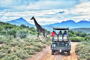 <4-6月>南非银河双园8天