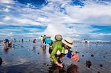 厦门亲子体验活动-渔民养成计划之厦门本岛赶海1日游