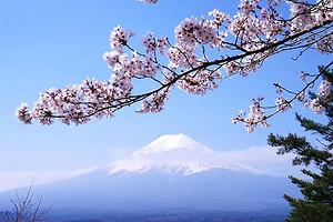 <4-5月>【经典之旅】东京富士山箱根京都奈良大阪6日游