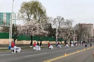 朝鲜平壤双飞马拉松6六日游_2020年朝鲜马拉松何时报名