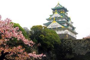 玩转日本本州经典六日