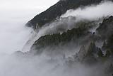 福州去庐山(住山上)、三叠泉瀑布纯玩双动3日游|庐山跟团旅游