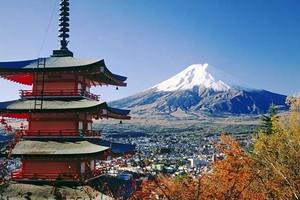福州-日本本州芝樱六日游|日本跟团旅游线