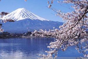 日本本州双古都赏花经典六日游|日本旅游线路