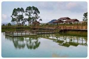 茂丰+湿地公园竹筏观鸟一日游