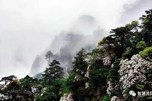 印象桂林漓江五日游