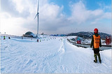 宜昌百里荒滑雪票优惠预订