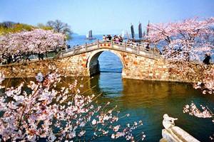 春节【深慢游】华东五市+江南水乡乌镇 深慢双卧七日游