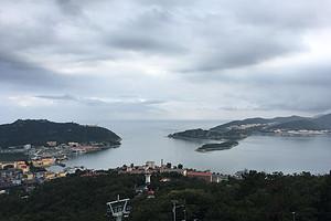 大连旅顺军港+金石滩心悦岛+老虎滩海洋公园、市内全景纯玩三日