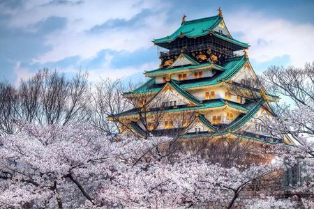 升级版【遇见日本】古韵京都、箱根大涌谷、富士山之巅6日观光